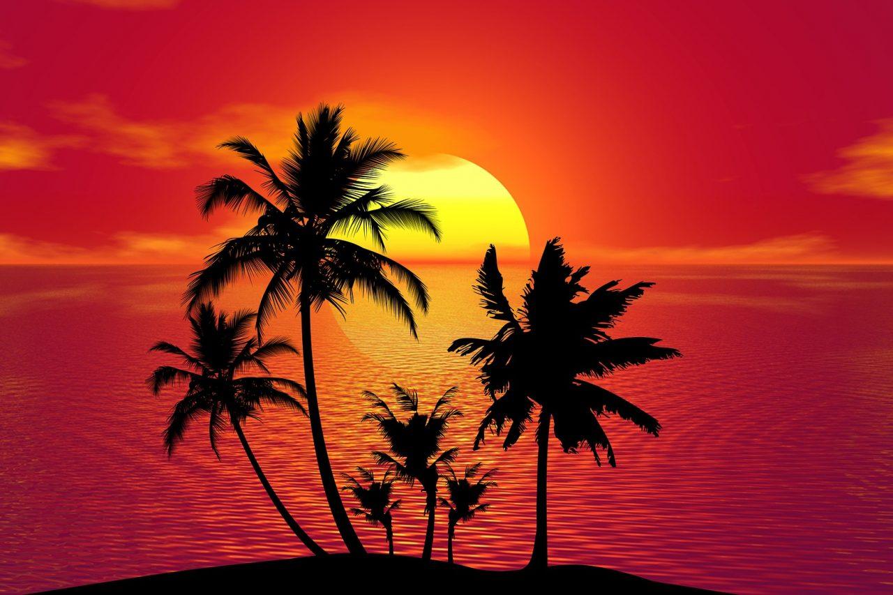 tropical-1651423_1920